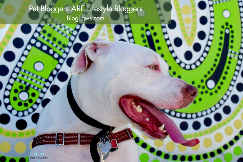 Pet Bloggers ARE Lifestyle Bloggers