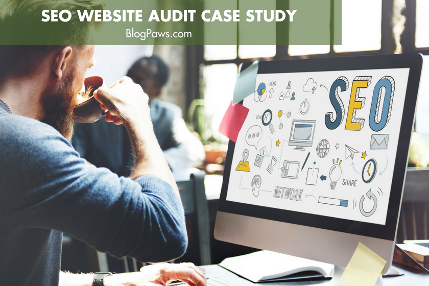 SEO Website Audit Case Study- About Pet Rats | BlogPaws.com