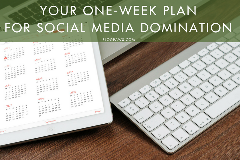 Your One-Week Plan for Social Media Domination | BlogPaws.com
