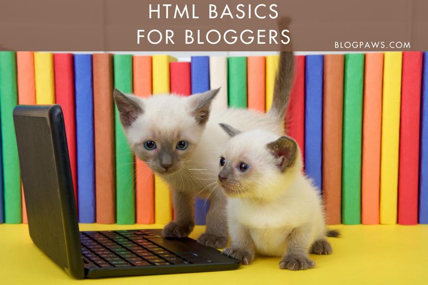 Hero HTML Basics