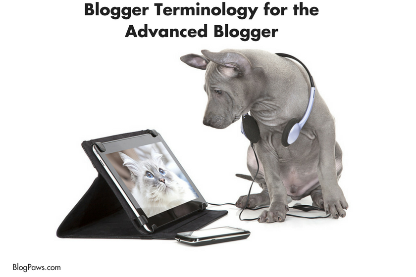 Blogger Terminology for the Advanced Blogger