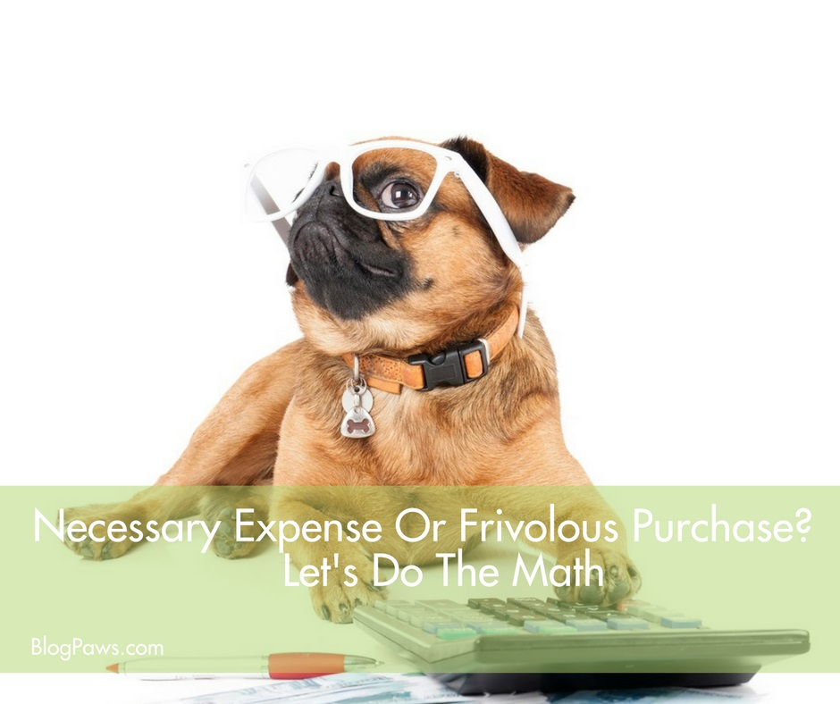 necessary expense or frivolous purchase how to decide