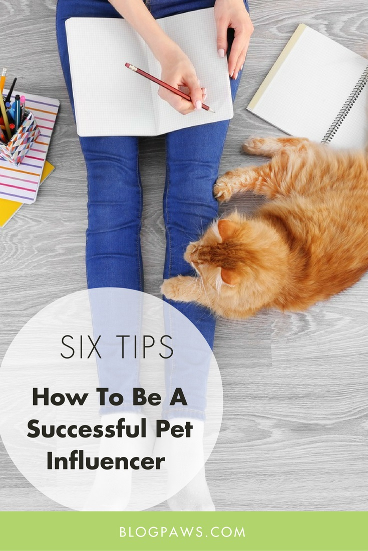 how to be a successful pet influencer