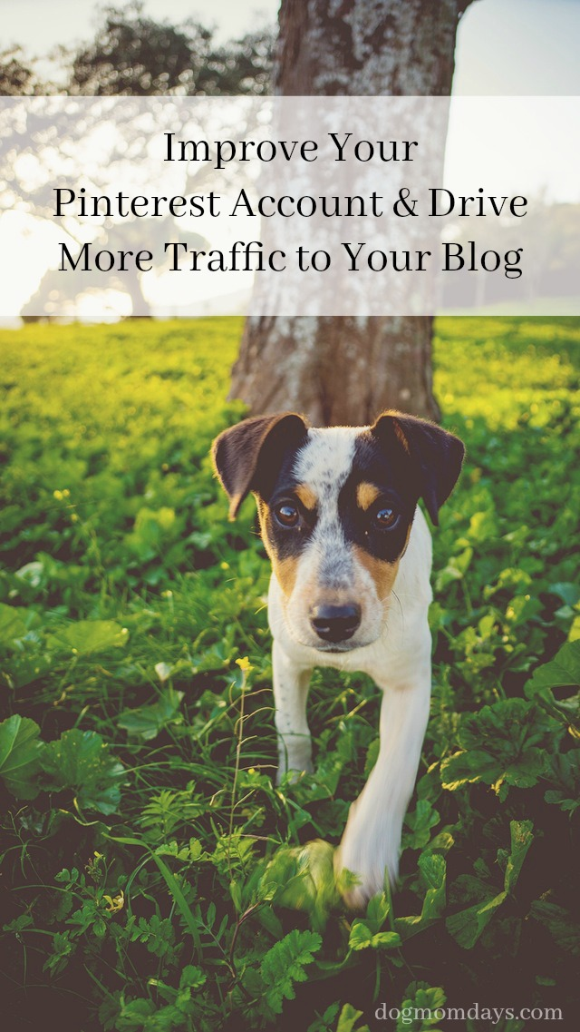 10 Simple Ways to Improve Your Pinterest Account and Drive More Traffic to Your Blog
