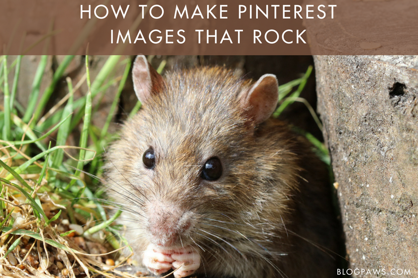 How To Make Your Pinterest Images Rock