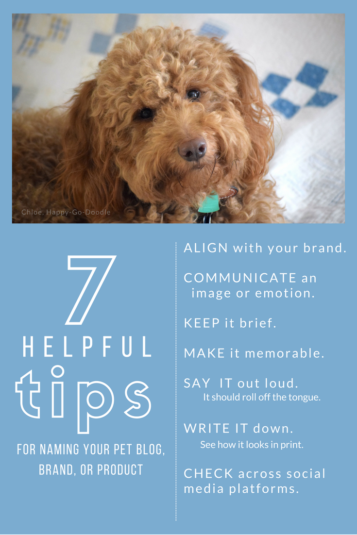 7 Tips for Creating a Memorable Blog Name from BlogPaws.com