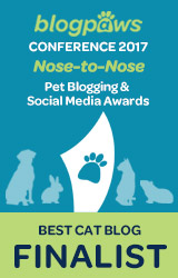2017 BlogPaws Nose-to-Nose - BEST CAT BLOG FINALIST badge