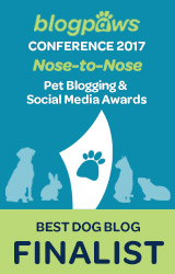 BEST DOG BLOG Nose-to-Nose 2017 - FINALIST badge