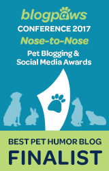 BEST PET HUMOR Nose-to-Nose 2017 - FINALIST badge
