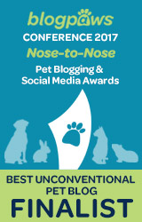 BEST UNCONVENTIONAL PET BLOG Nose-to-Nose 2017 - FINALIST badge