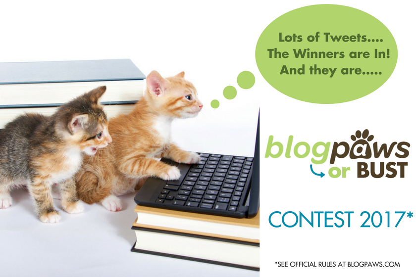 BlogPaws or Bust 2017 Winners