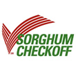 Sorghum - the smart choice
