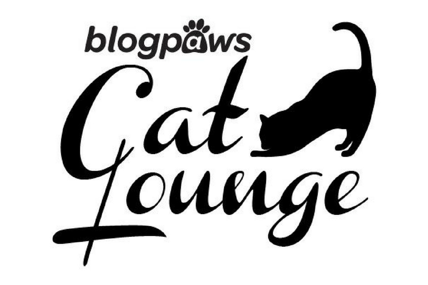 Cat Lounge at BlogPaws Conference