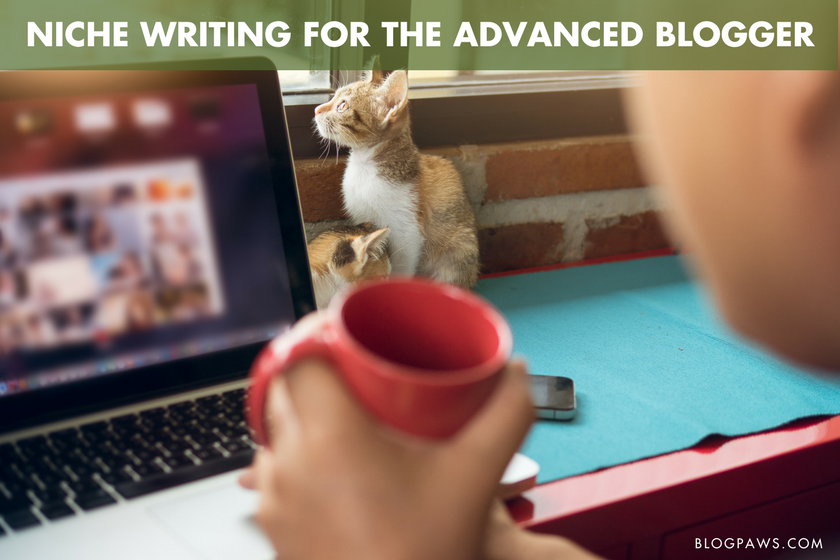 Niche Writing for the Advanced Blogger | BlogPaws.com