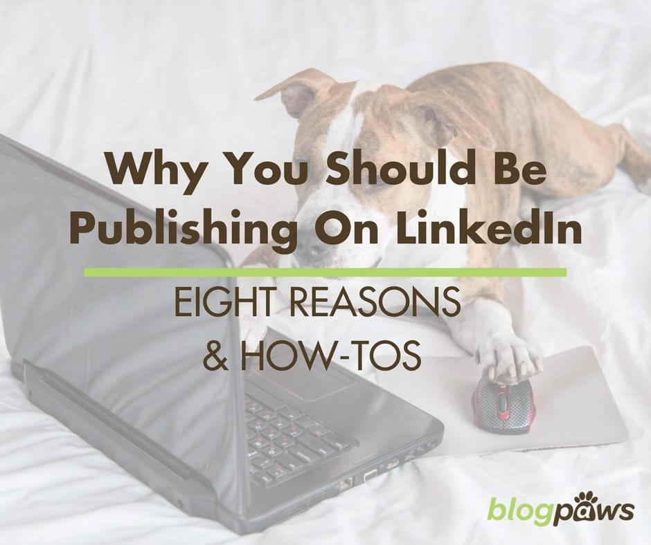reasons to publish on linkedin