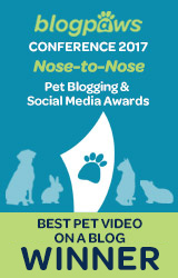Best Pet Blog Video badge