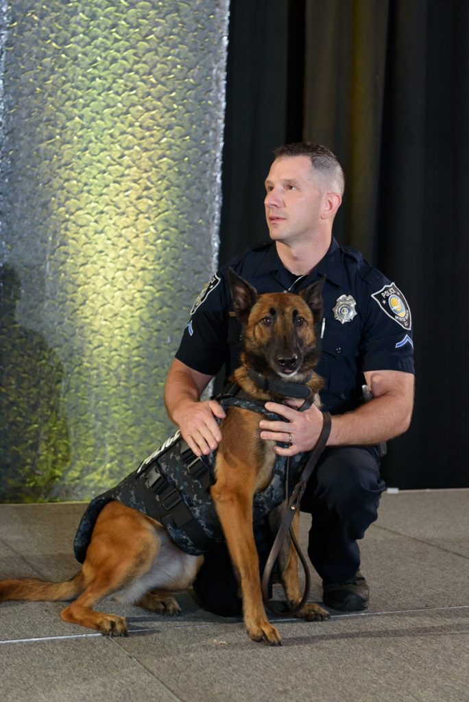 Dog body armor BlogPaws