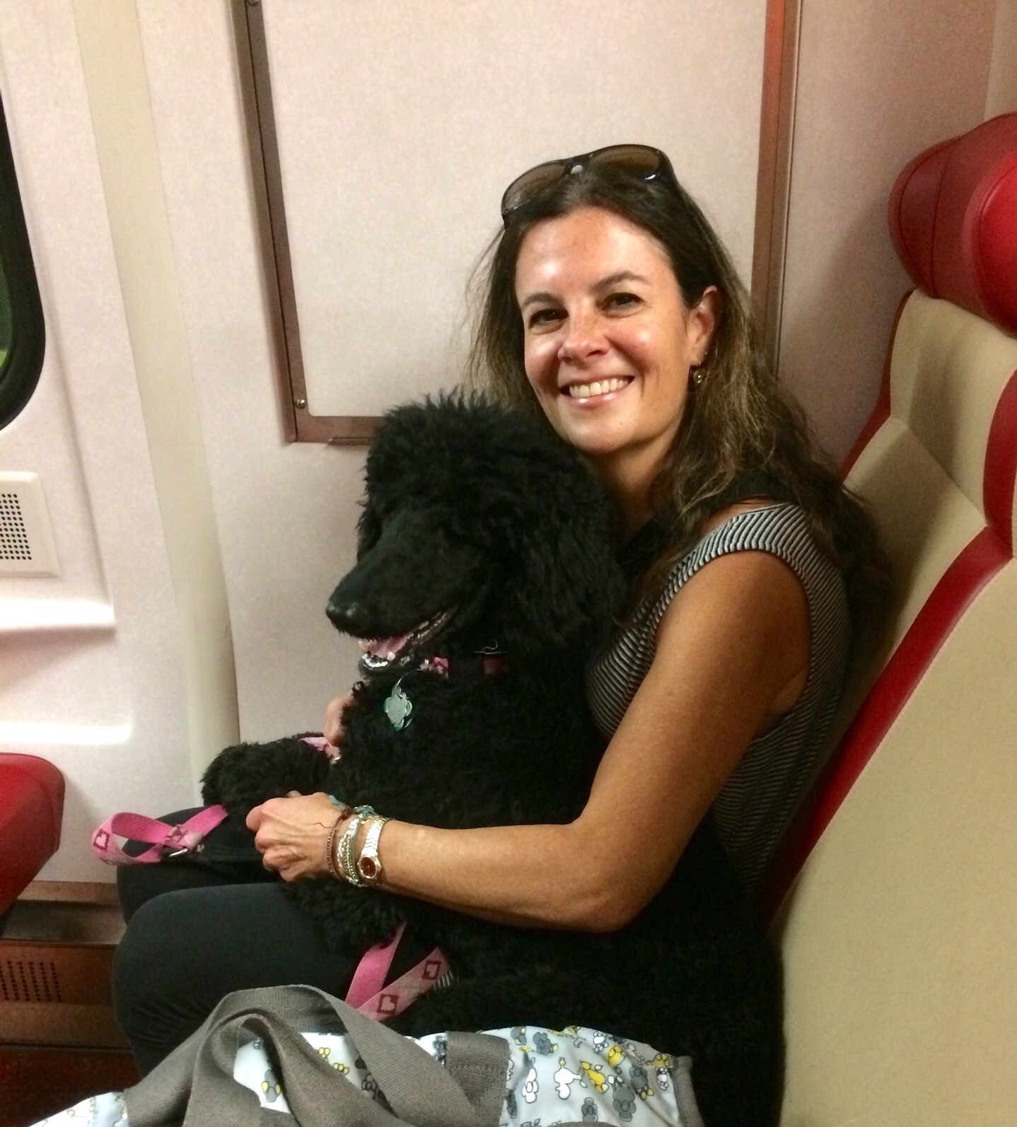 Lisa and Minnie on the train