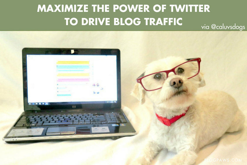 Maximize the Power of Twitter to Drive Traffic to Your Blog