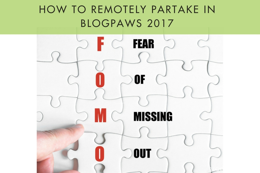 How to Remotely Partake in BlogPaws 2017
