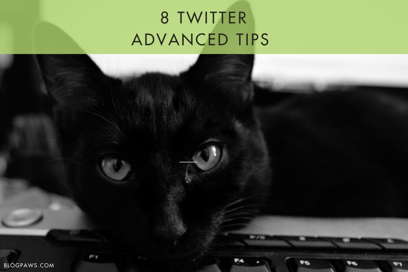TWITTER ADVANCED TIPS