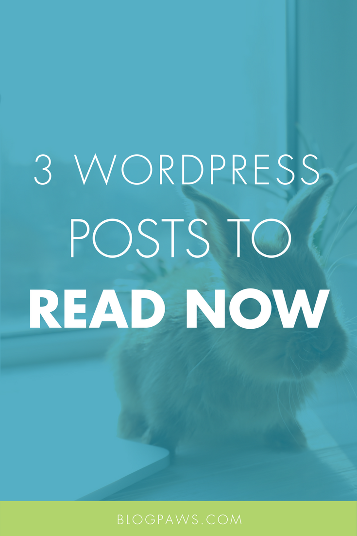 3 WordPress Tips to Read This Weekend