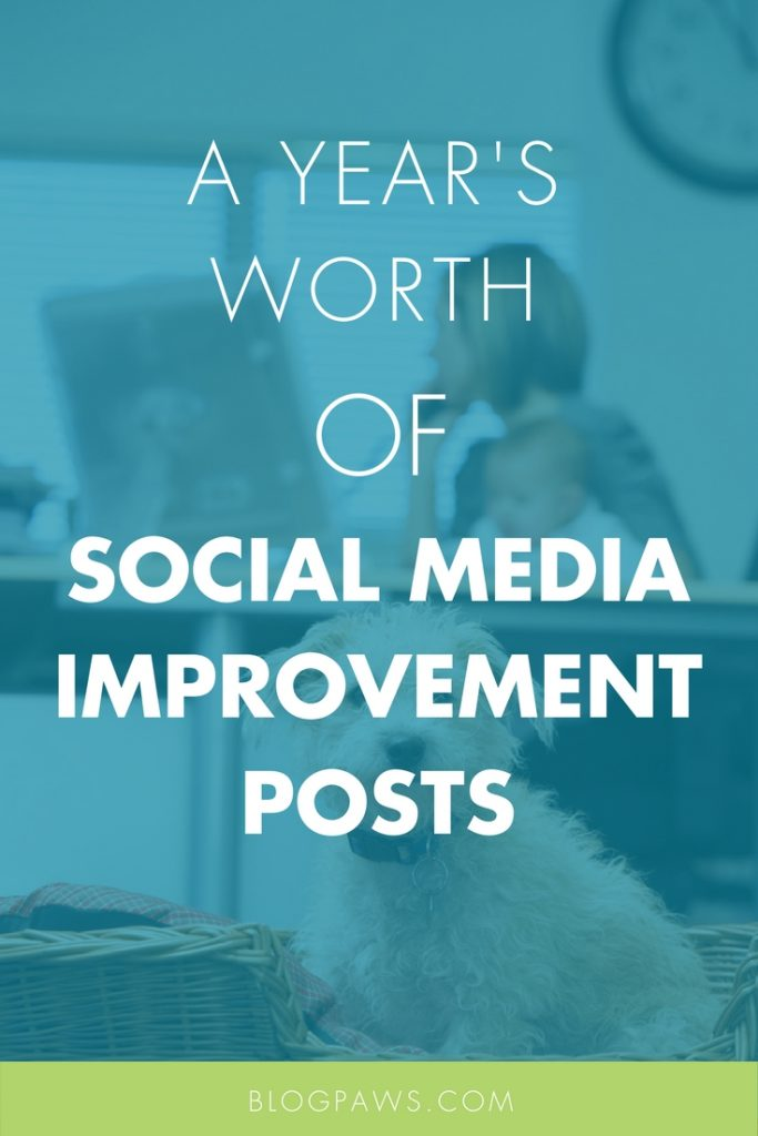 social media improvement
