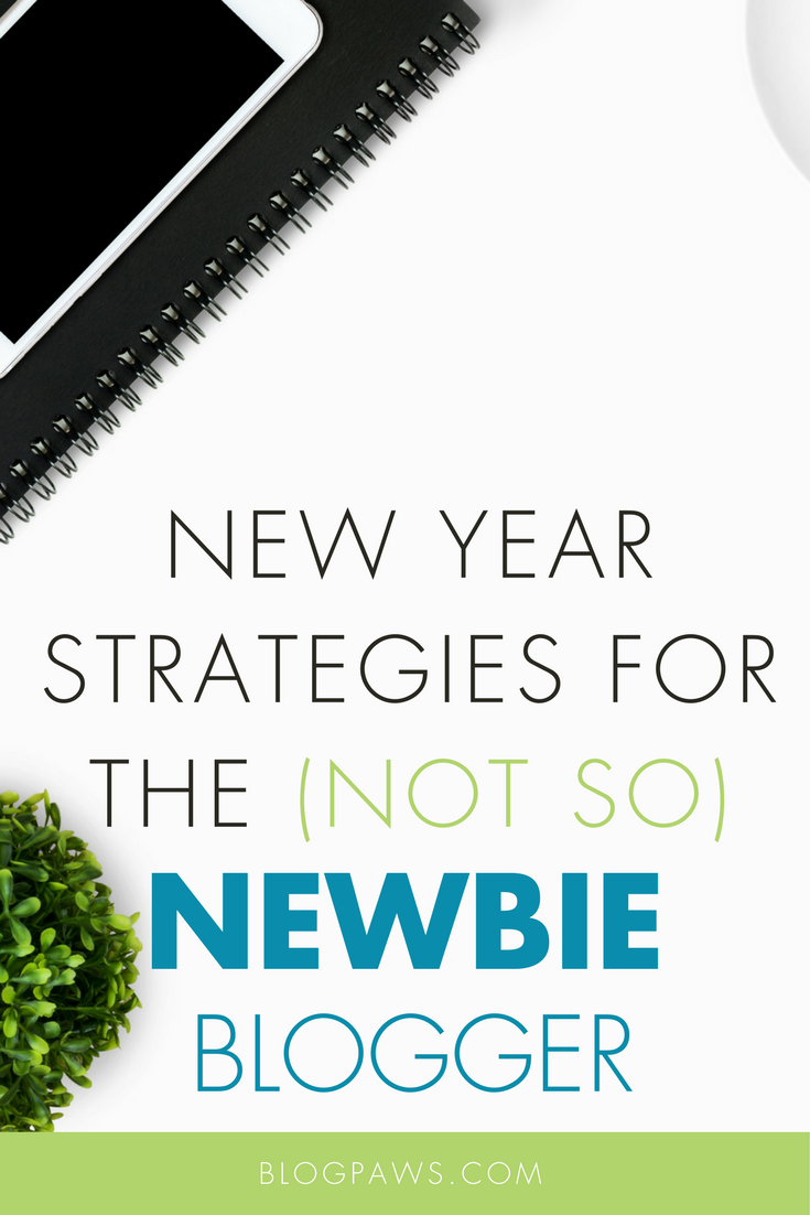 New Year Strategies for a (Not So) Newbie Blogger