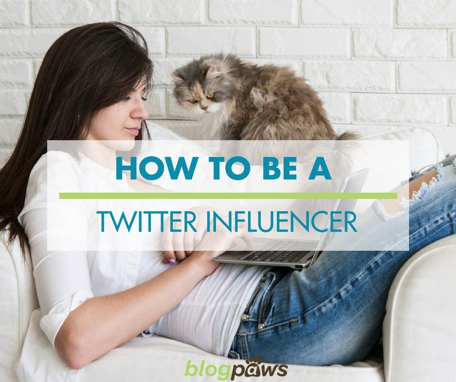 How to be a twitter influencer