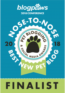 Best New Pet Blog