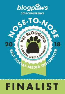 Best Social Media Influencer