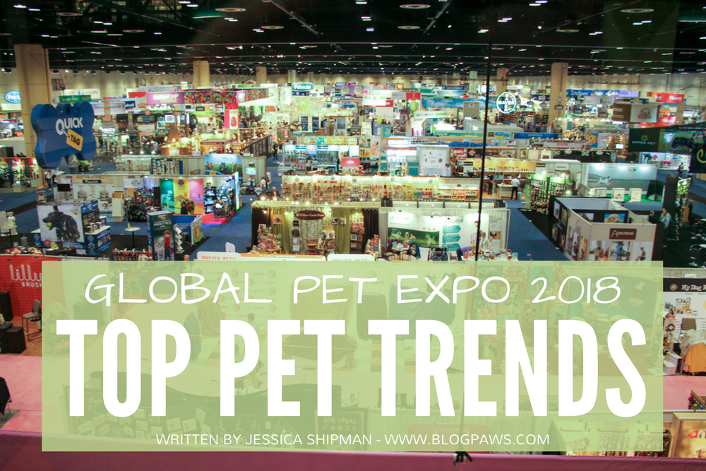 Blog Content Inspiration: 7 Pet Industry Trends from Global