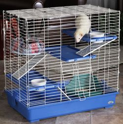 Pet deluxe multi floor first ferret home
