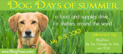 Be the Change for Pets Dog Days of Summer