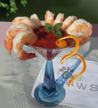 Shrimp Blogtail