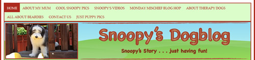 Snoopys-dog-blog-header