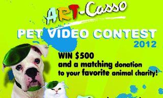 Art-Casso-Contest