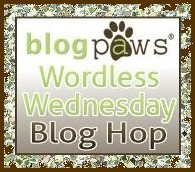 BlogPaws Wed Button