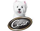 Thanks to our BlogPaws Sponsor Cesar - love them back.