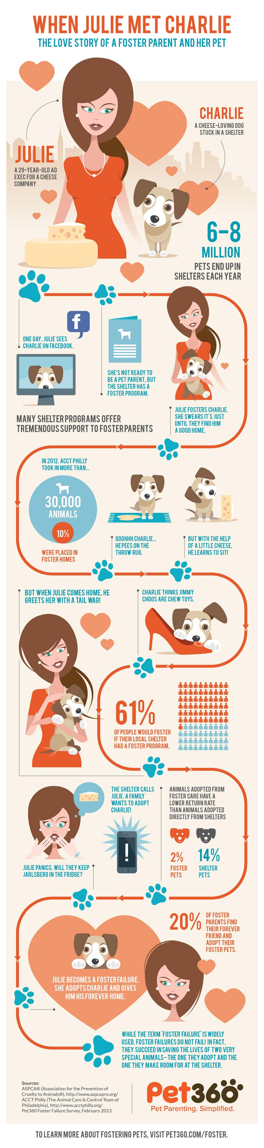 Foster Pets Infographic