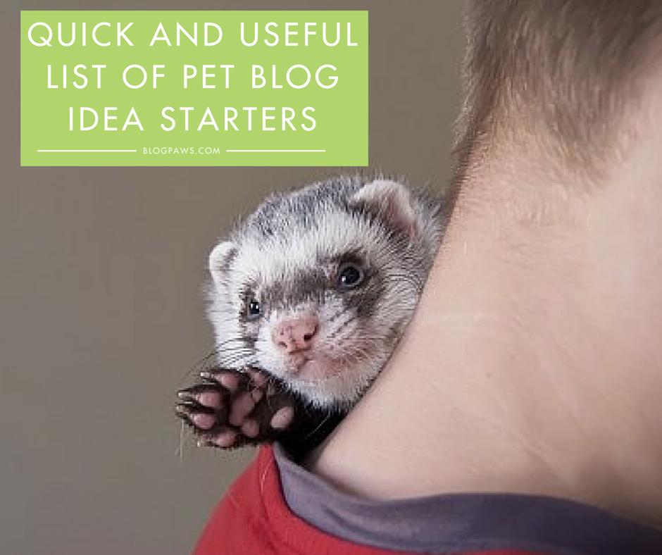 Quick and useful content ideas