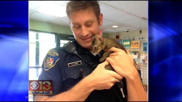 Baltimore officer and kitten