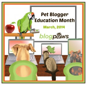 BlogPaws Education