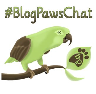 #blogpawschat