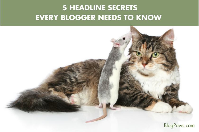 5 Headline Secrets Every Blogger Needs to Know | BlogPaws.com