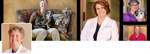 Ask Dr. Anna - @Sweetbonana Twitter Header
