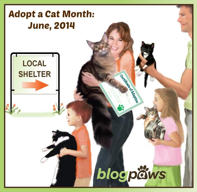 BP_June_Adopt_local