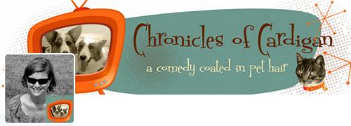 Chronicles Of Cardigan - @ChroniclesCardi Twitter Header