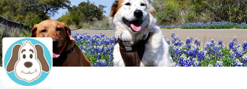 DogTipper - @DogTipper Twitter Header