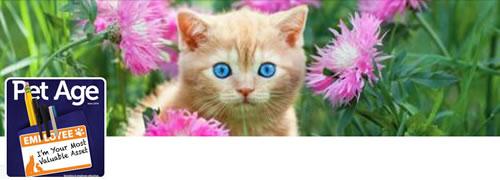 Pet Age Magazine - @PetAgeMag Twitter Header